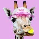 A_Tennis_Giraffe